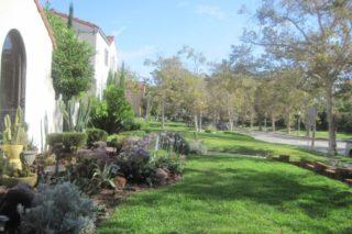 castro landscaping 12