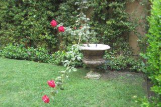 castro landscaping 4
